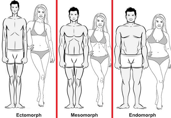 What is your body type? - MamaExercises.com